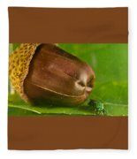 Halicid Bee Fleece Blanket