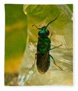 Halicid Wasp 3 Fleece Blanket