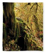 Hall Of Mosses Fleece Blanket