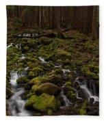 Hall Of The Mosses Fleece Blanket