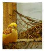 Halloween Yellow Bird Fleece Blanket