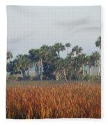 Hammock, Everglades National Park Fleece Blanket
