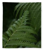 Hapuu Pulu Hawaiian Tree Fern - Cibotium Splendens Fleece Blanket