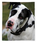 Harlequin Great Dane Fleece Blanket