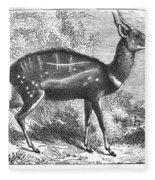 Harnessed Antelope Fleece Blanket