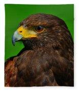 Harris's Hawk Fleece Blanket