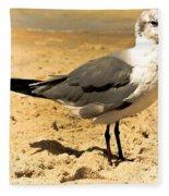 Hartnell Fleece Blanket