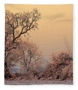 Frost 2 Fleece Blanket
