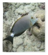 Hawaiian Tropical Fish P1060093 Fleece Blanket