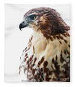 Hawk Majesty Fleece Blanket