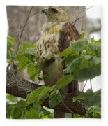Hawk On Watch Fleece Blanket