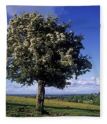 Hawthorn Tree On A Landscape, Ireland Fleece Blanket