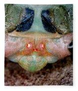 Head Of Cicada Fleece Blanket