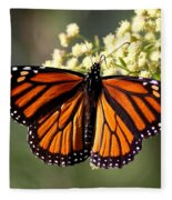 Heavenly Wings Fleece Blanket