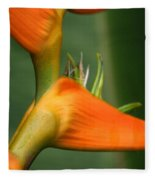 Heliconia Latispatha Fleece Blanket