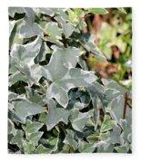Helix Glacier Ivy Fleece Blanket
