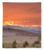 High Park Wildfire At Sunset Fleece Blanket