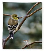 Ho Hum Bird In An Ice Storm Fleece Blanket