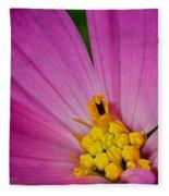 Honey Bee's Candy Dish Fleece Blanket