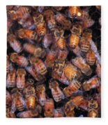 Honey Honey Fleece Blanket