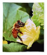 Honeybee And Cantalope Fleece Blanket