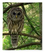 Hoot Hoo Dee Hoo Fleece Blanket