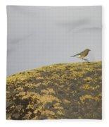 Hopping Blue Bird Fleece Blanket
