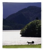 Horse And Buggy By Waterfront Fleece Blanket