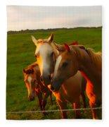 Horse Family Soft N Sweet Fleece Blanket