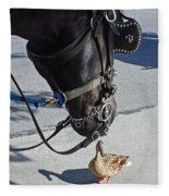 Horse Feathers Fleece Blanket