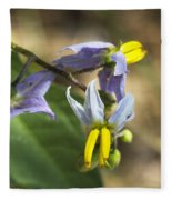 Horse Nettle Nightshade - Solanum Carolinense Fleece Blanket