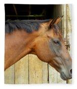 Horse Portrail Fleece Blanket