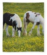 Horses Grazing, County Tyrone, Ireland Fleece Blanket