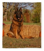 Hoss In Autumn II Fleece Blanket