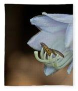 Hosta Blossom 2 Fleece Blanket