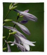 Hosta Flowers Fleece Blanket