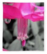 Hot Pink Cactus Fleece Blanket