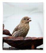 House Finch Eating Jelly Fleece Blanket