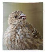 House Finch Profile Fleece Blanket
