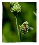 Hoverfly On Grass Fleece Blanket