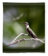 Hummingbird - Bird Fleece Blanket