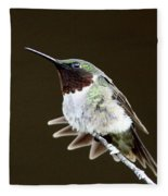 Hummingbird - Wide Tail Fleece Blanket