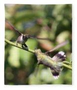 Hummingbird - You Have Done It Now Fleece Blanket
