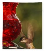 Hummingbird At The Feeder Fleece Blanket