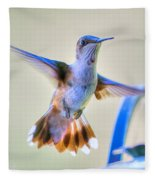 Hummingbird At The Feeder Fleece Blanket