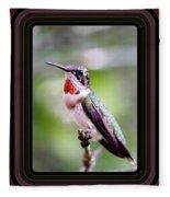 Hummingbird Card Fleece Blanket