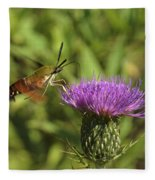 Hummingbird Or Clearwing Moth Din141 Fleece Blanket