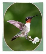 Hummingbird Photo - Light Green Fleece Blanket