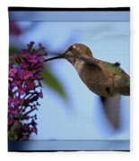 Hummingbird With Blue Border - Digital Painting Fleece Blanket
