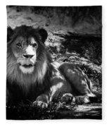 Hungry Lion Fleece Blanket